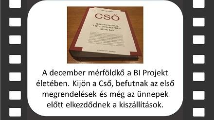 BI projekt évértékelő diák